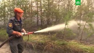 Во Владимирской области третьи сутки не могут потушить крупный лесной пожар