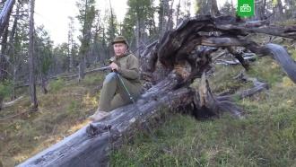 Путин в Туве катался на катере и ел лесные ягоды
