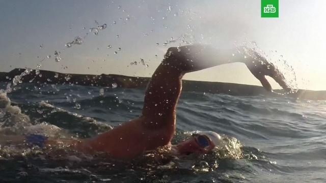 Пловец-экстремал из Великобритании преодолел 560 километров за 49 дней.Великобритания, плавание, рекорды, экстремальные виды спорта, спорт.НТВ.Ru: новости, видео, программы телеканала НТВ