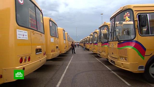 На Кубани кновому учебному году запускают больше 200школьных автобусов.автобусы, дети и подростки, Краснодарский край, образование, школы.НТВ.Ru: новости, видео, программы телеканала НТВ