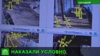 Экс-начальник службы безопасности Русского музея получила условный срок по делу о мошенничестве