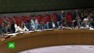 Британия обрушила на Совбез ООН «поток лжи» по делу Скрипалей