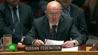 Небензя: сирийские войска не намерены применять химоружие