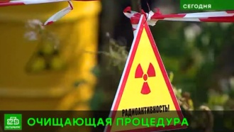 Под Петербургом начинают очищать от радиации военные доты