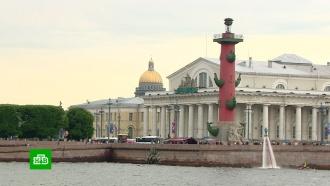 В&nbsp;<nobr>Санкт-Петербурге</nobr> могут ввести туристический сбор