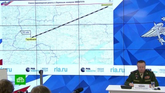 СК РФ направил информацию по крушению МН17в Генпрокуратуру для передачи Нидерландам