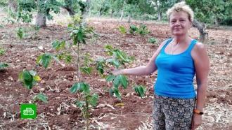 Российские следователи занялись делом о загадочной гибели туристки на Кубе