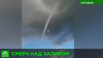 Очевидец запечатлел смерч над Нарвским заливом: видео