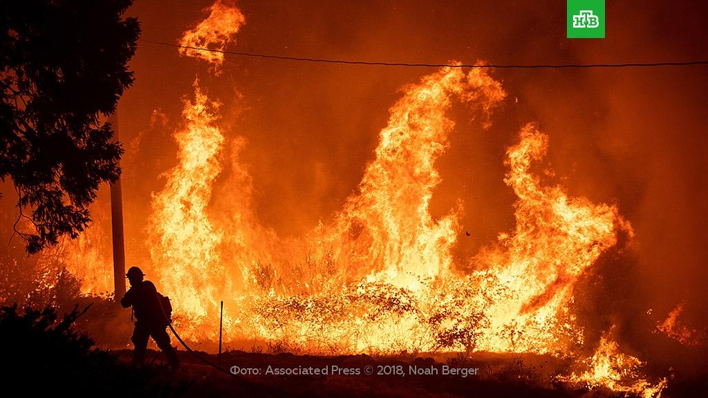 Крупнейший в истории Калифорнии природный пожар локализован.Испания, Португалия, США, лесные пожары, пожары.НТВ.Ru: новости, видео, программы телеканала НТВ