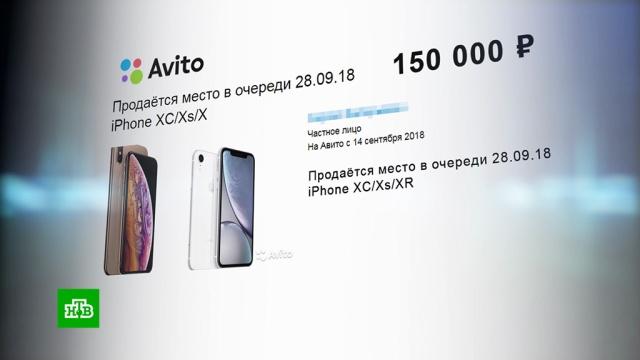 Место вочереди за новым iPhone продают за 250тысяч рублей.Apple, iPhone, Интернет, гаджеты, технологии, торговля.НТВ.Ru: новости, видео, программы телеканала НТВ