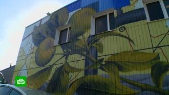 <nobr>Стрит-арт</nobr> вТатарстане: как нефтяная столица республики заиграла новыми красками