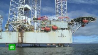Трейдеры предсказывают подъем нефтяных цен до $100за баррель