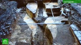 Закон не нарушается: петербургские археологи рассказали об обнаруженных погребениях на месте будущей стройки