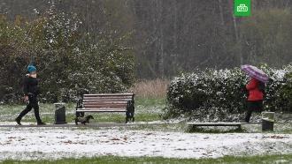 На этой неделе в Москве может выпасть первый снег.До Москвы все-таки добралась осень. Вся предстоящая неделя в столичном регионе ожидается пасмурной и холодной.Москва, осень, погода, прогноз погоды, снег.НТВ.Ru: новости, видео, программы телеканала НТВ