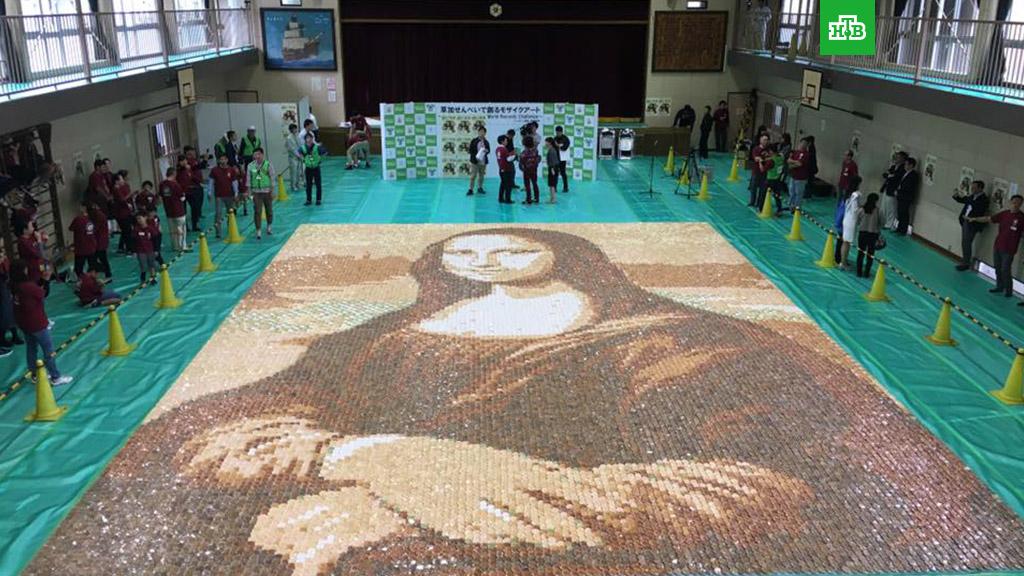Японцы сделали гигантскую мозаику «Моны Лизы» из рисовых крекеров