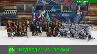 «Медведи» одолели «Волков» на льду в Петербурге