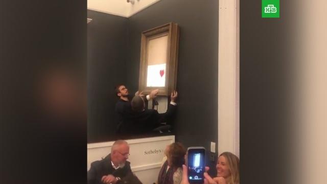 Картина Бэнкси самоуничтожилась после ее продажи за миллион фунтов.Великобритания, аукционы, живопись и художники.НТВ.Ru: новости, видео, программы телеканала НТВ