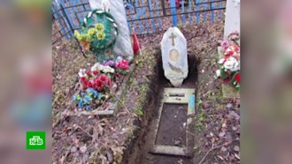 Вгробу видал: житель Кузбасса вырыл могилу для живой бывшей жены