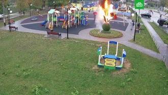 В Люберцах подросток спалил скульптуру на детской площадке