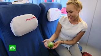 Пассажирам «Сапсанов» дарят зеленые яблоки вчесть юбилея НТВ