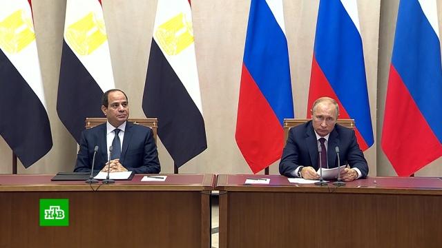 Путин о чартерах в Египет: будем стремиться в ближайшее время возобновить перевозки.авиация, Египет, Путин.НТВ.Ru: новости, видео, программы телеканала НТВ