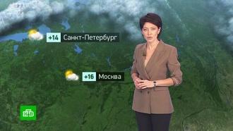Утренний прогноз погоды на 18октября