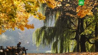 В Москве побит более чем полувековой температурный рекорд.Температура воздуха в Москве 18 октября побила рекорд, державшийся для этой даты с 1967 года.Москва, погода.НТВ.Ru: новости, видео, программы телеканала НТВ