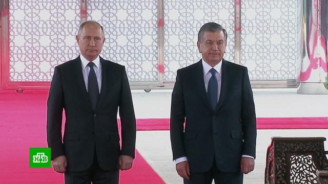 Путин ожидает роста российских инвестиций вэкономику Узбекистана.Путин, Узбекистан, переговоры.НТВ.Ru: новости, видео, программы телеканала НТВ