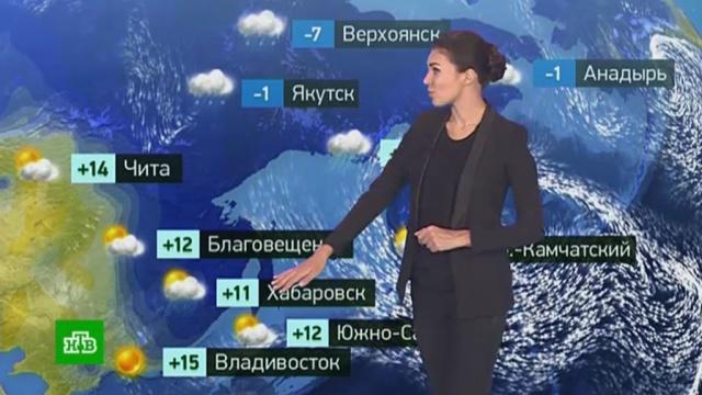 Утренний прогноз погоды на 19октября.Москва, погода, прогноз погоды.НТВ.Ru: новости, видео, программы телеканала НТВ