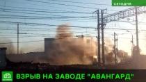 ЧП под Гатчиной: пострадавшие доставлены в больницу с минно-взрывными травмами