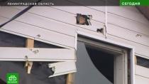 Жители Малых Колпан латают стены икрыши домов после взрыва на «Авангарде»