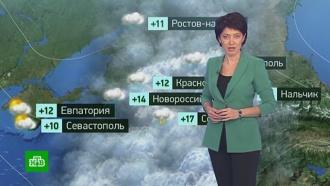 Утренний прогноз погоды на 25 октября