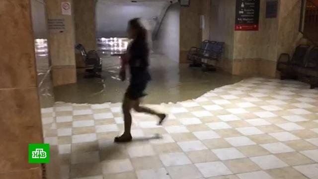 Потоп загнал жителей Кубани на крыши ичердаки.Краснодарский край, наводнения, погода, стихийные бедствия.НТВ.Ru: новости, видео, программы телеканала НТВ