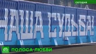 В Петербурге «Зениту» нарисовали самые длинные граффити