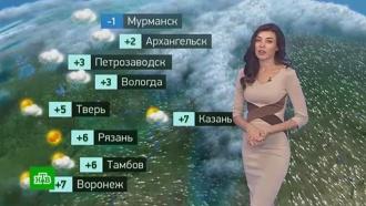 Утренний прогноз погоды на 26 октября