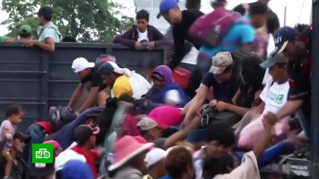 Пентагон направит 5тысяч военных на границу сМексикой.Мексика, США, граница, мигранты.НТВ.Ru: новости, видео, программы телеканала НТВ