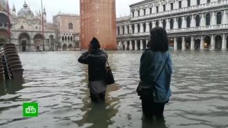 Исторический центр Венеции оказался на 75% затоплен водой