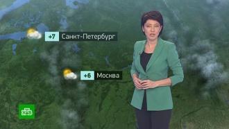 Утренний прогноз погоды на 1ноября