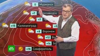 Утренний прогноз погоды на 2 ноября