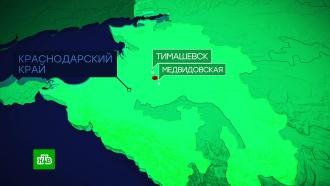 МВД назвало виновника ДТП споездом на Кубани