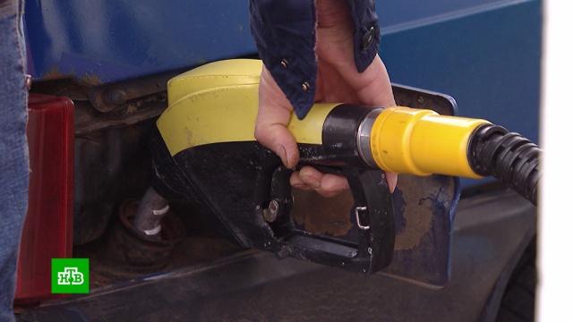 СМИ: бензин вянваре не подорожает больше, чем на 1, 7%.Медведев, бензин, нефть, правительство РФ, тарифы и цены.НТВ.Ru: новости, видео, программы телеканала НТВ