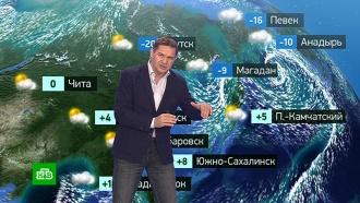 Прогноз погоды на 7 ноября