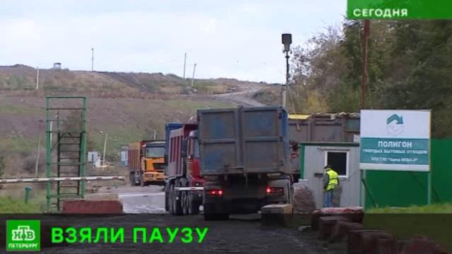 Врио губернатора заморозил скандальный мусорный проект вКаменке.Санкт-Петербург, мусор, строительство, экология.НТВ.Ru: новости, видео, программы телеканала НТВ