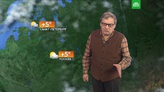 Прогноз погоды на 9 ноября