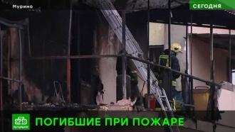 СК завел уголовное дело после гибели людей вмуринском пожаре