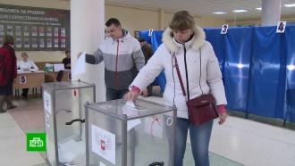 Иностранные наблюдатели назвали выборы вЛНР иДНР образцовыми