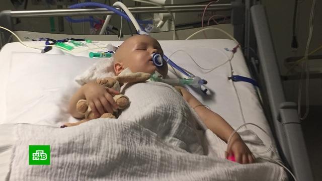 Двухлетнему Артёму нужны деньги на лечение вГермании.SOS, благотворительность, болезни, дети и подростки, здоровье, онкологические заболевания.НТВ.Ru: новости, видео, программы телеканала НТВ