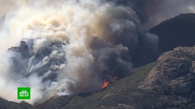 Пожар в Калифорнии уничтожает целые районы и города.США, лесные пожары, стихийные бедствия.НТВ.Ru: новости, видео, программы телеканала НТВ