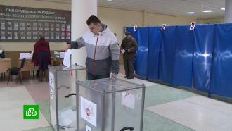ВДНР иЛНР подводят итоги выборов