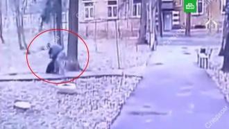 Москвич проломил голову пенсионерке, кормившей кошек во дворе